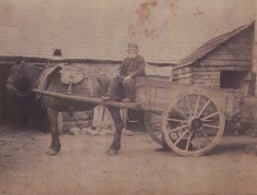 Man with Horse and Cart
