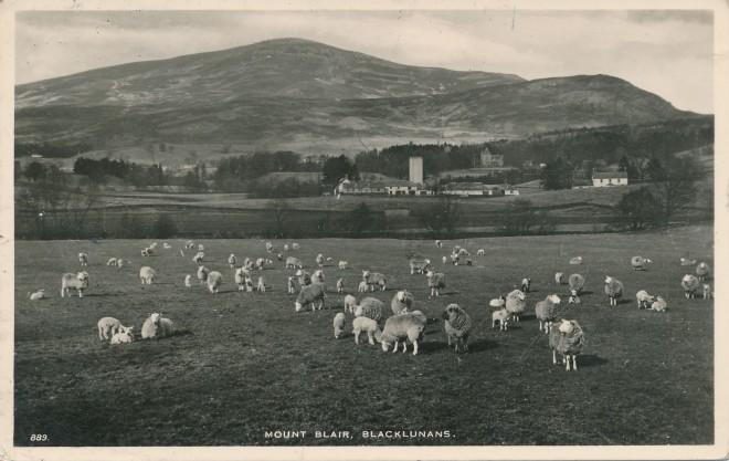 Mount Blair over Blacklunans