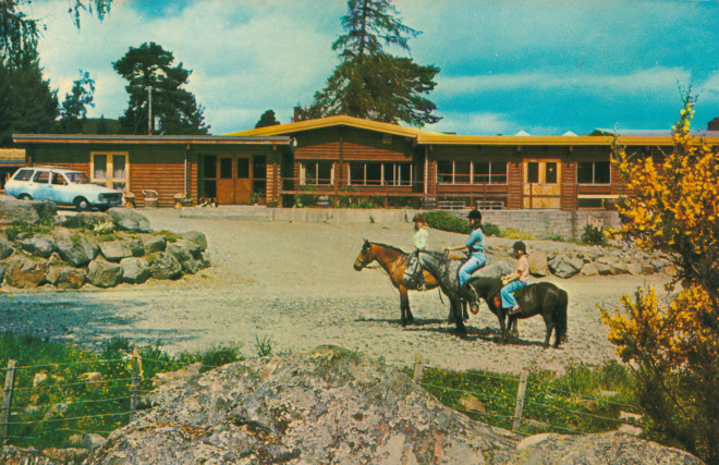 The Log Cabin hotel