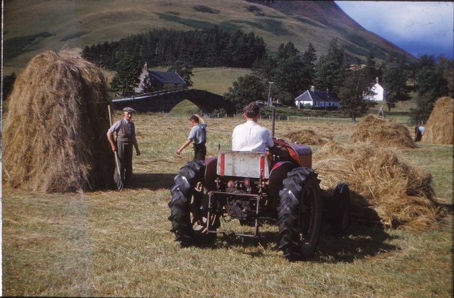 Haymaking at the Spittal