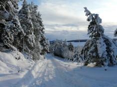Glen Derby in the snow