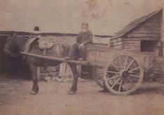 Horse Drawn Transport