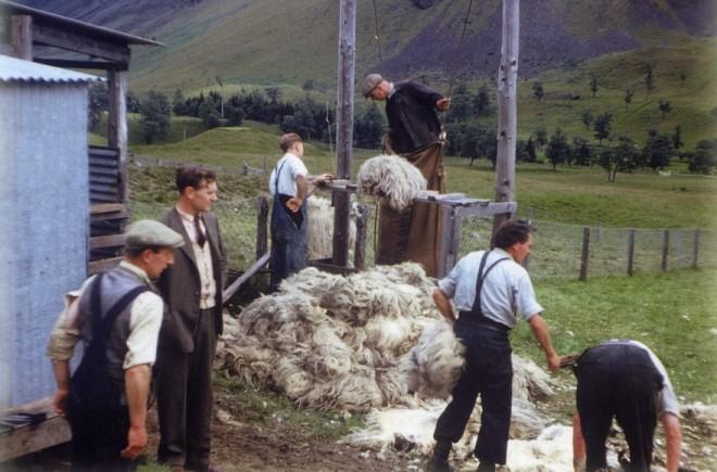 Sheep shearing at Dalmunzie