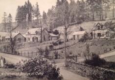 Flora Noonan's Memories