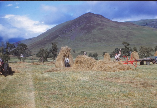 Haymaking near the Spittal