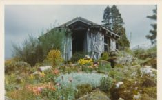 Dirnanean House and Gardens (modern pictures)
