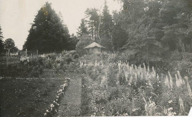 Gardens (3)
