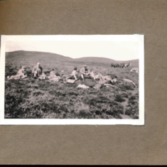 A picnic on the shoot August 1937
