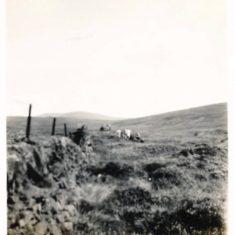Walking on Dirnanean 1937